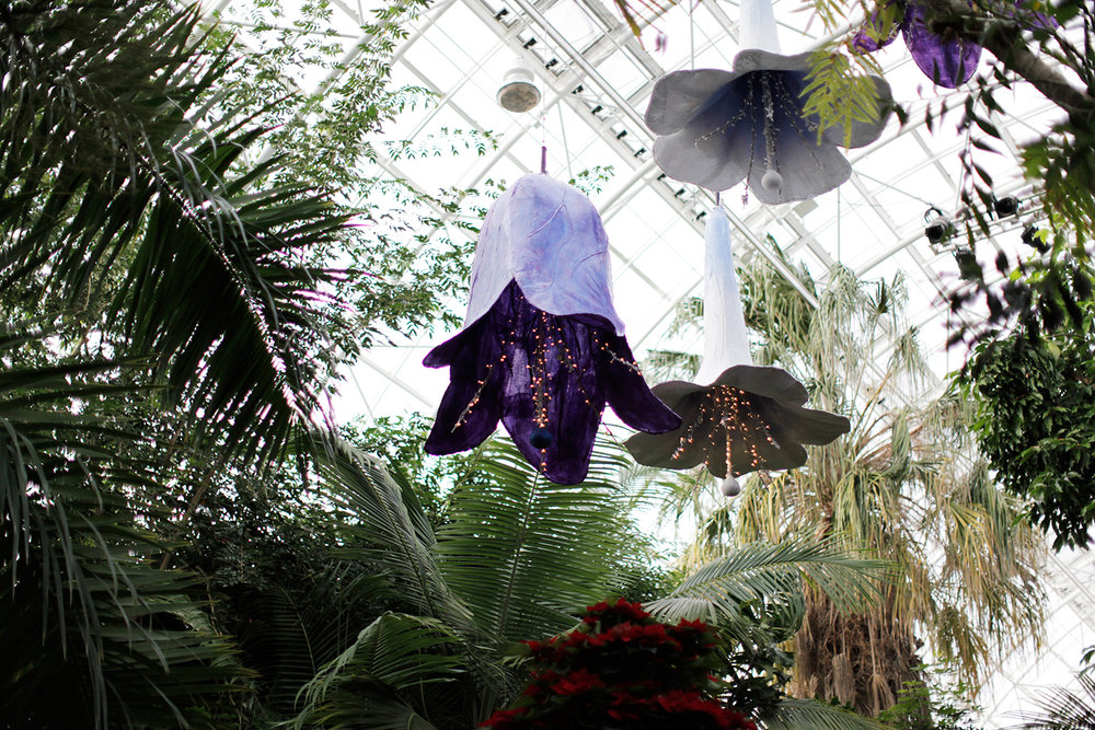Inside the Crystal Bridge.