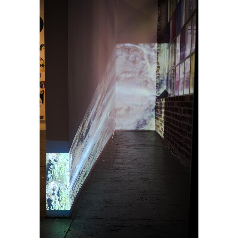 Cybele Lyle: Falling Sideways