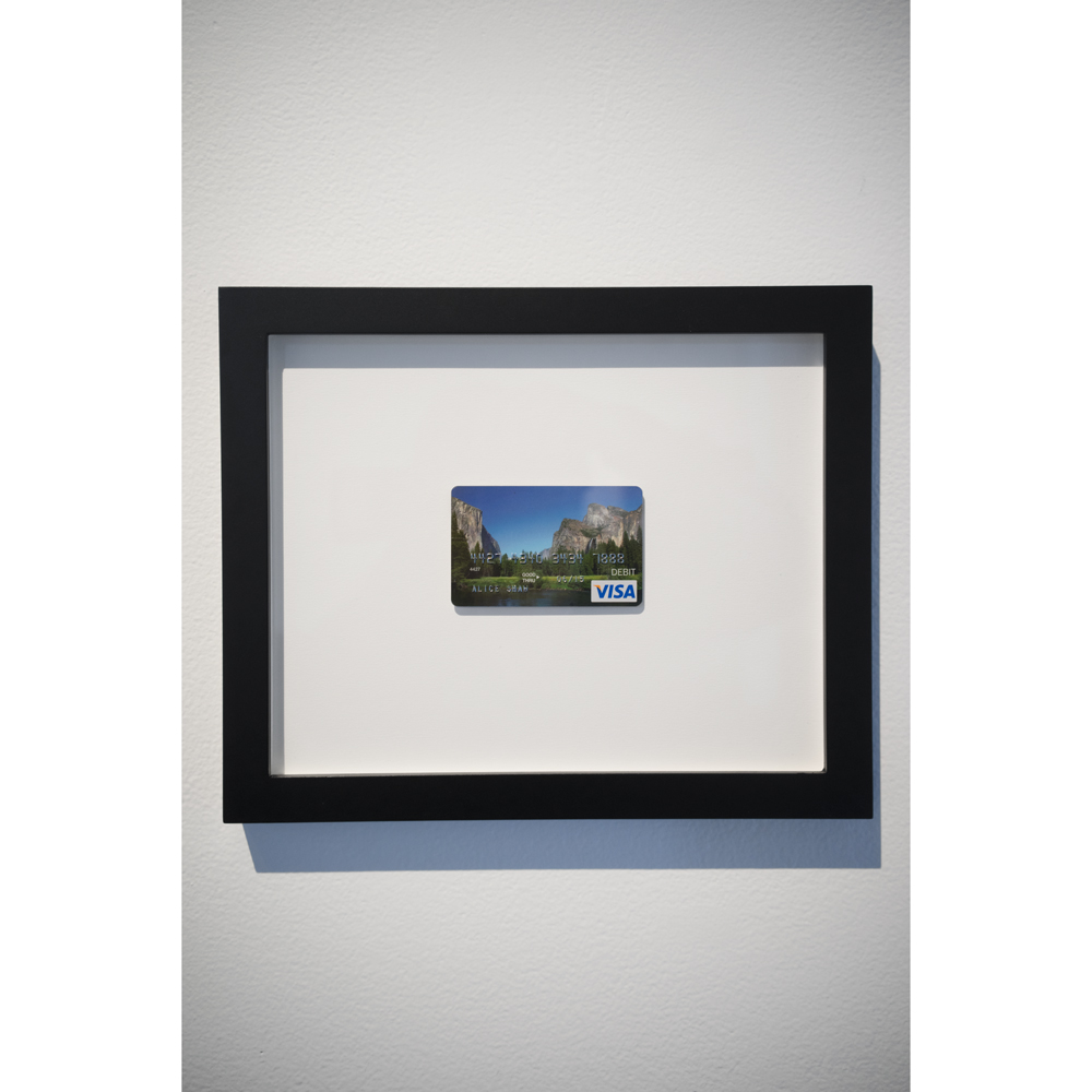 Alice Shaw: Unemployment Debit Card For Out of Work Artist From The Ansel Adams School of Photography