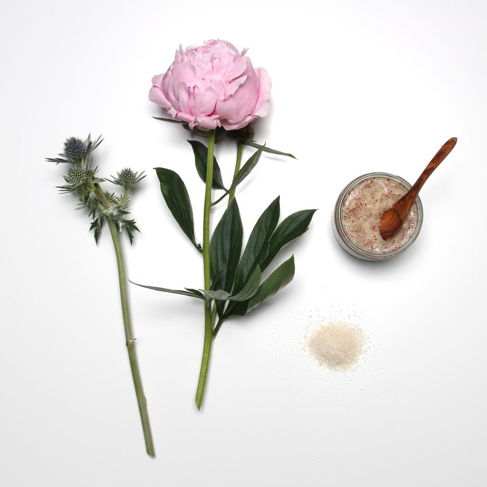 Nathalie Bond Organics Body Scrub