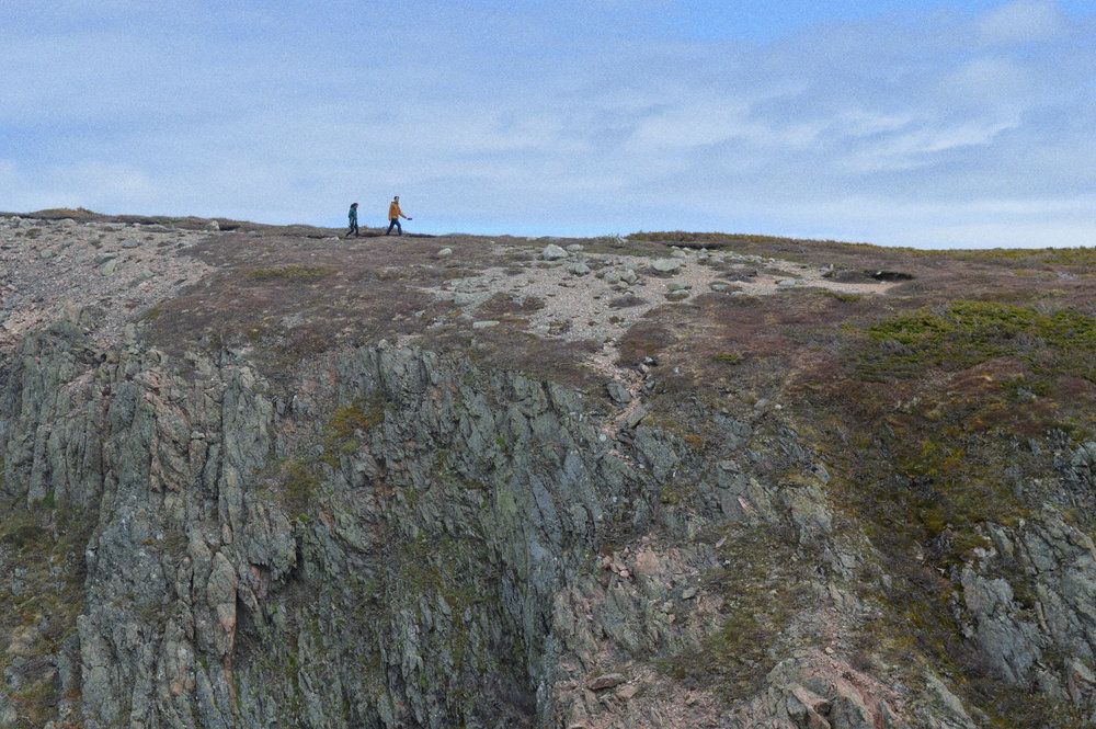 Hiking in   Gros Morne National Park