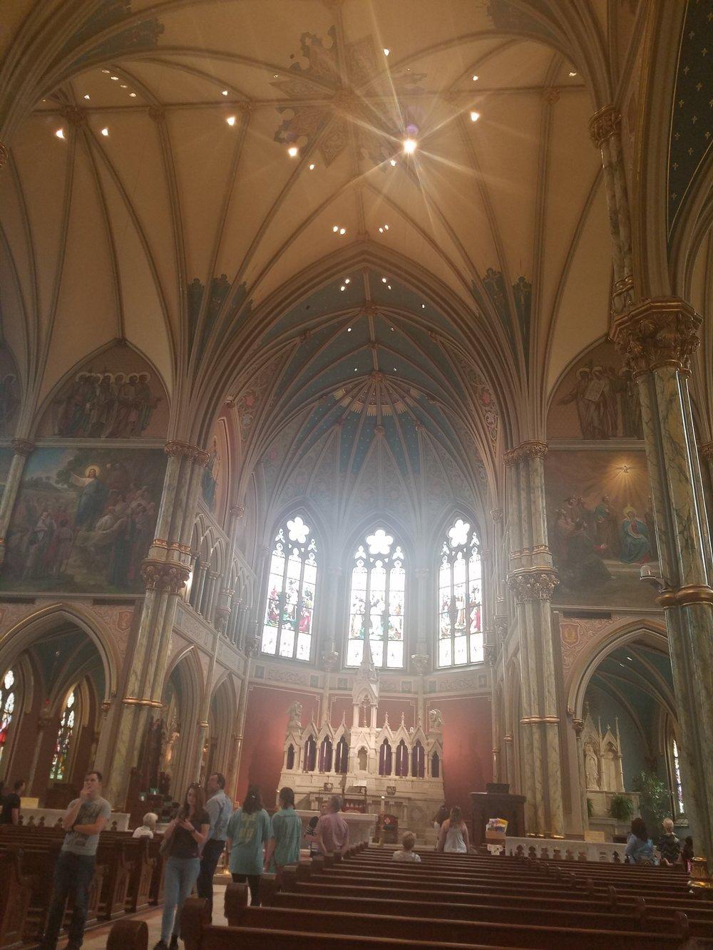 Cathedral Savannah