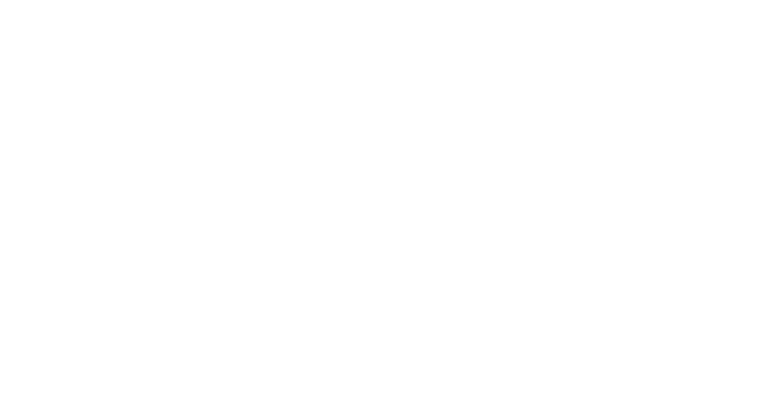 Famous Pizza & Beer