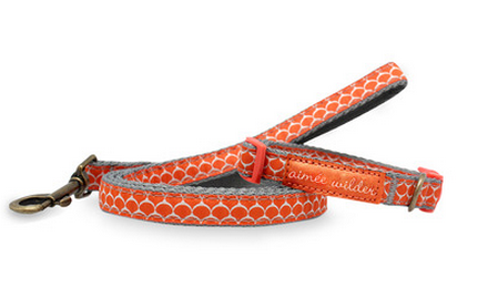 Keep him on a leash.  Aimee Wilder's Circus Dog Collar & Leash Set is the perfect blend of fabulous and functional. I just bought this on Gilt … get one before they sell out!