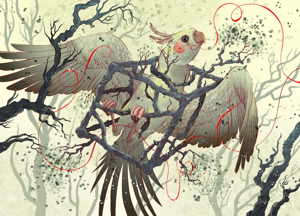 Bird-Cage-website.jpg