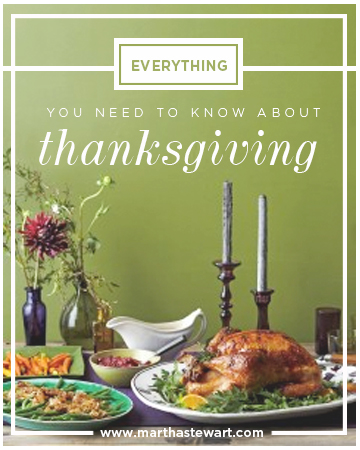 11115_lp_EverythingYouNeedtoKnowAboutThanksgiving.jpg