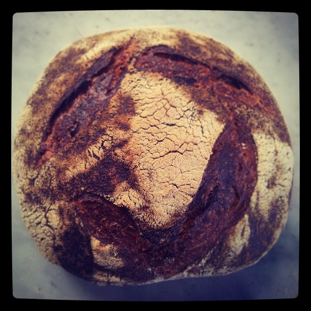 @ashergilding made some stunning rye sourdough from his new fav book. Thanks to the lovely ladies from Kinfolk Magazine for the beaitiful gift. #tartinebreadrecipe #pantreeproduce
