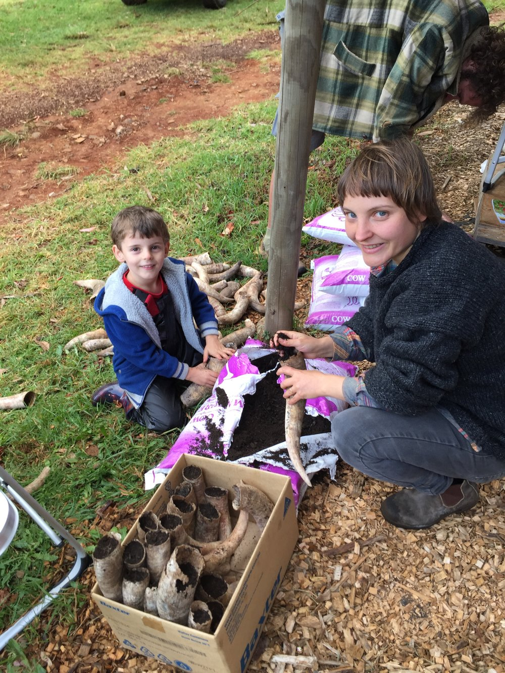 My son Oscar and I filling the horns with organic cow manure.