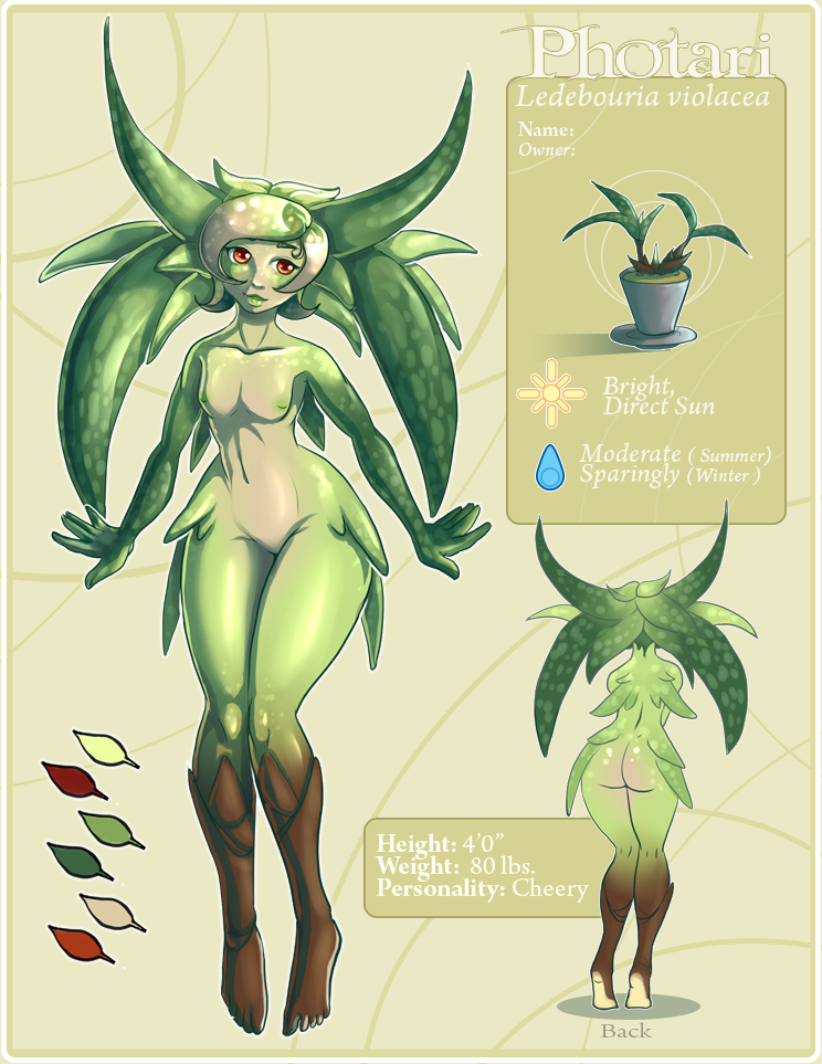 Photari (Plant Character Exploration), Personal Work