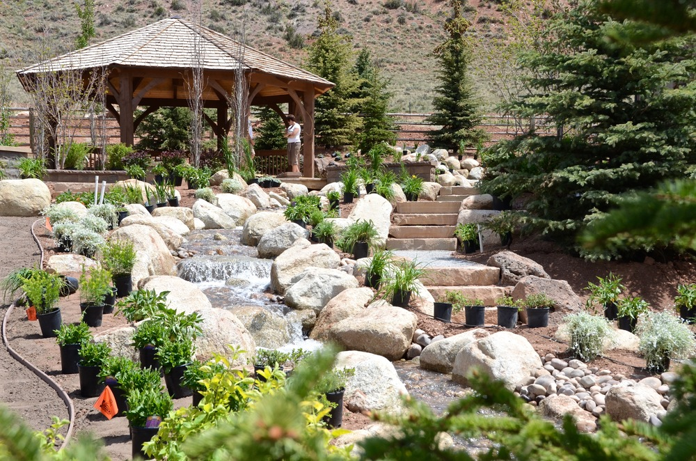Planting set out by Platinum Landscape & Pools.