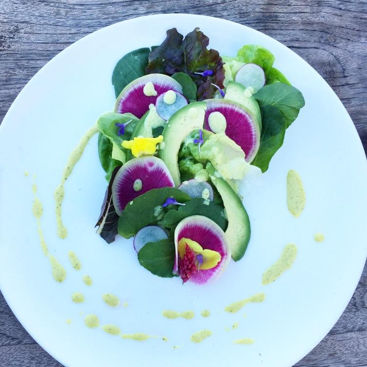 Butter Lettuce Salad with Watermelon Raddish, Avocado & Honey Mustard