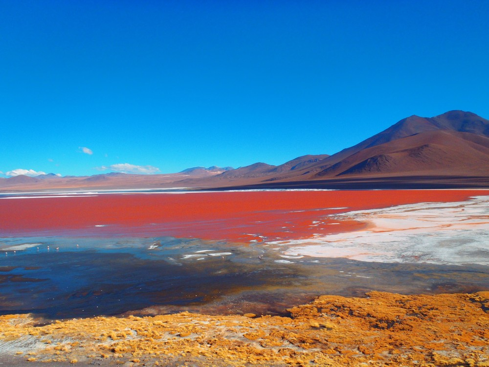 Laguna.Colorada.original.1914.jpg