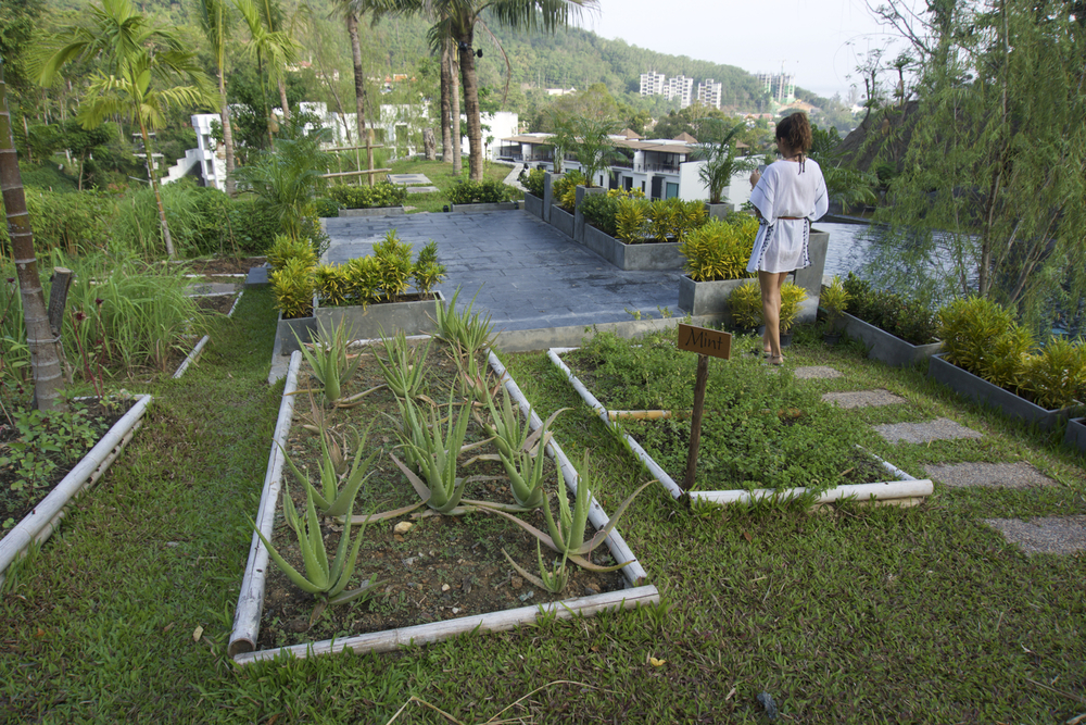 The herb gardens