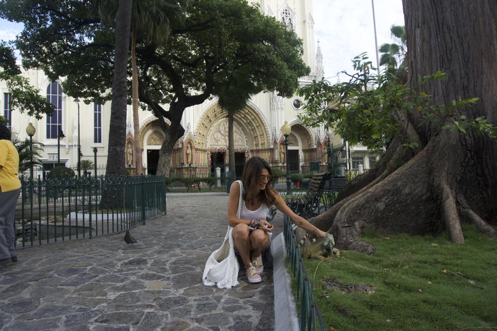 Plaza de las Iguanas, Guayaquil