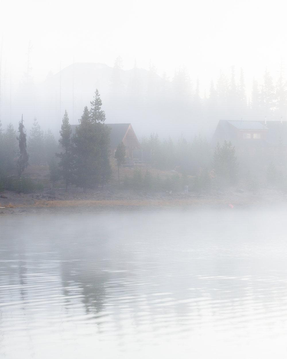 Through the Fog