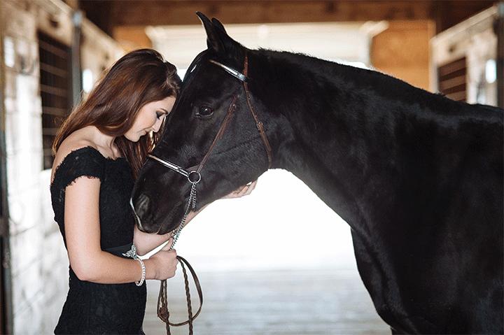 Equestrian-2