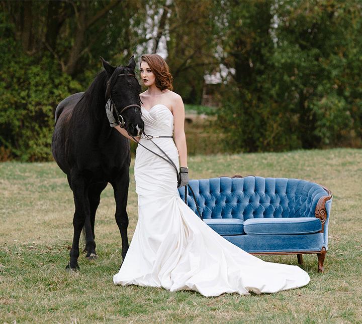 Equestrian-19