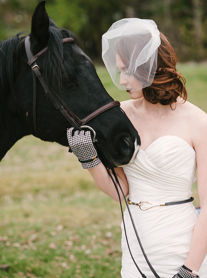 Equestrian-21