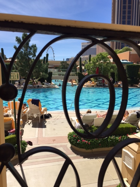 poolside, wynn, Ira and Lucy wedding planner