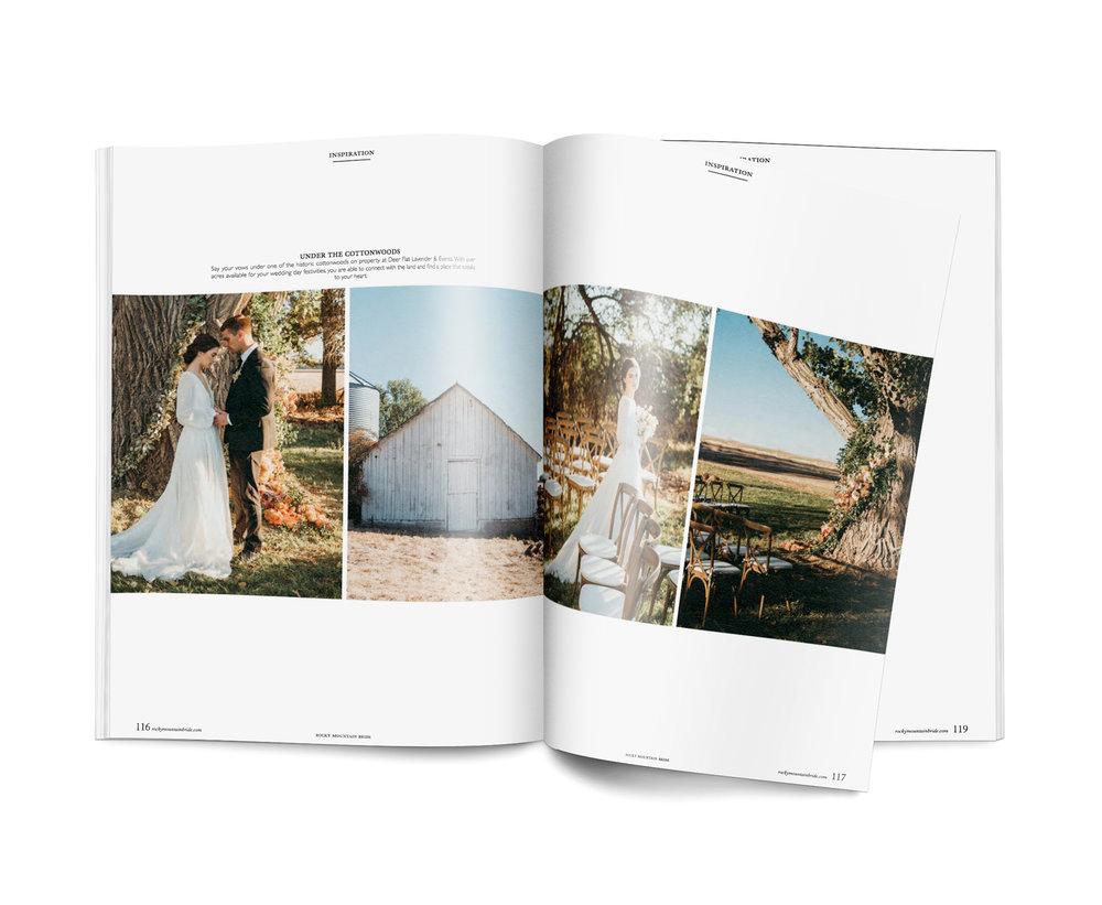 page-3 copy.jpg