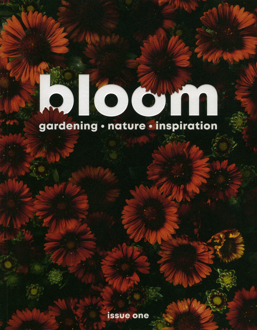 Bloom_Magazine_cover_photography_by_On_a_hazy_morning_Amsterdam001.jpg