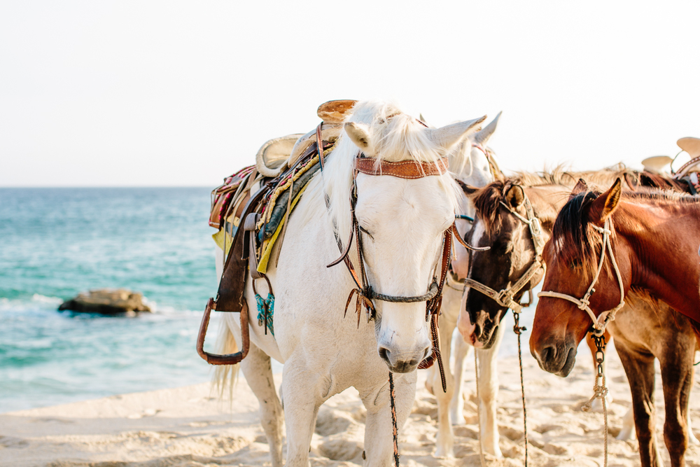 Mexico-Destination-Wedding-Photographer-Emily-Kirke-14.jpg