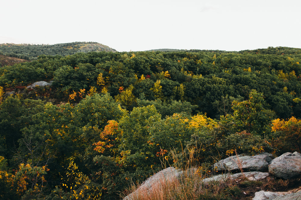 storm-king-mountain-elopement-emily-kirke-photography (40 of 40).jpg