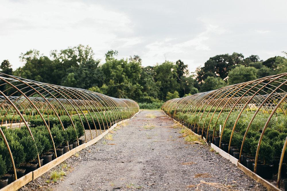 inn-at-fernbrook-farms-wedding-emily-kirke-photography (2 of 14).jpg