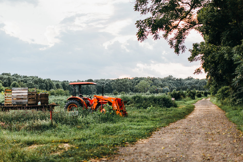 connecticut-farm-wedding-emily-kirke-photography (1 of 1)-3.jpg