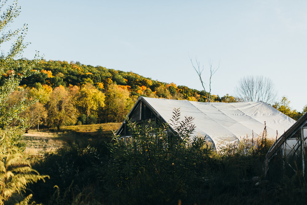 blooming-hill-farm-wedding-emily-kirke-photography (17 of 31).jpg