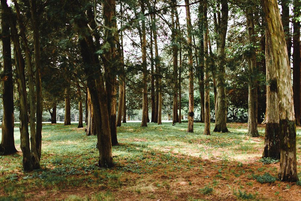 connecticut-burgundy-garden-mansion-wedding-emily-kirke (5 of 175).jpg