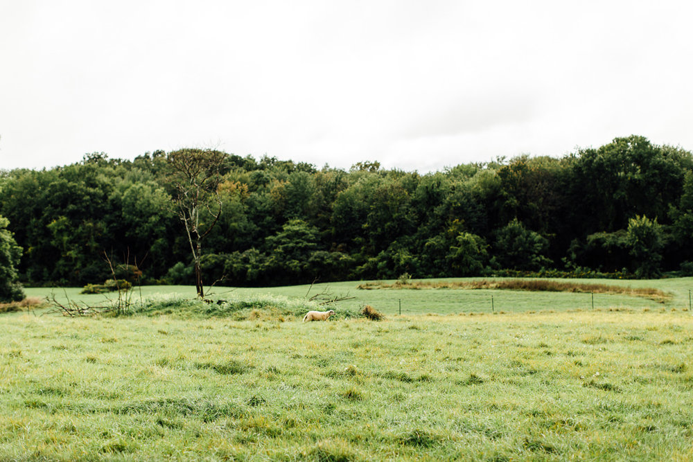 liberty-farms-hudson-flowerkraut-wedding-emily-kirke-photography (31 of 161).jpg