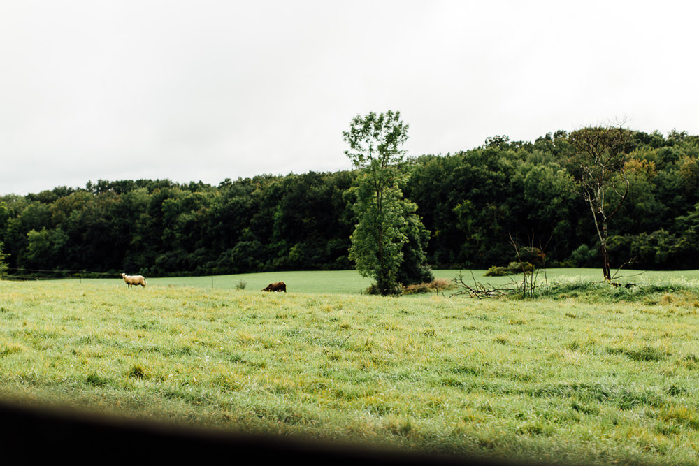 liberty-farms-hudson-flowerkraut-wedding-emily-kirke-photography (32 of 161).jpg