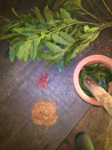 Preparing tobacco, chili and neem leaf