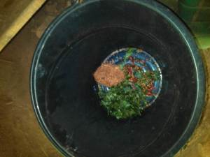 Place in bucket and mix with water