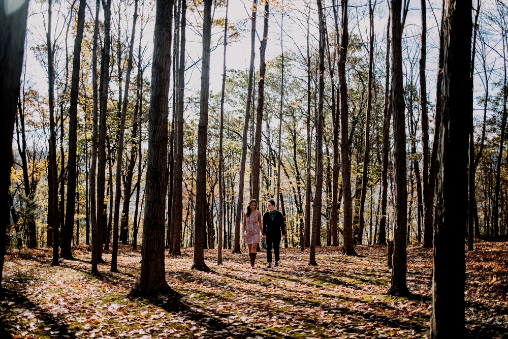 WALLYandJOengagement2014 (101 of 150)-Exposure.jpg