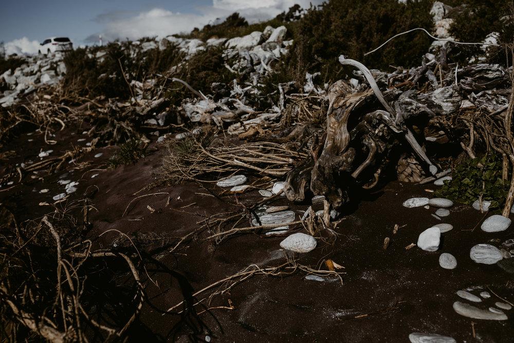 NewZealand-TheHurstsandCo-2017-3 (61 of 158).jpg