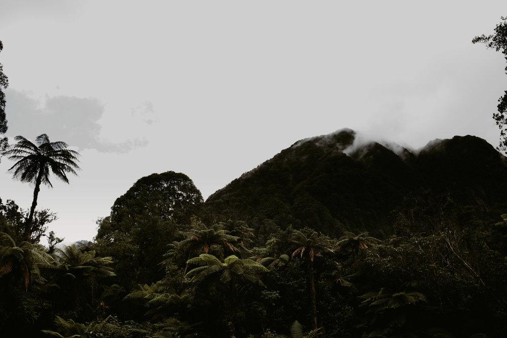 NewZealand-TheHurstsandCo-2017-3 (66 of 158).jpg