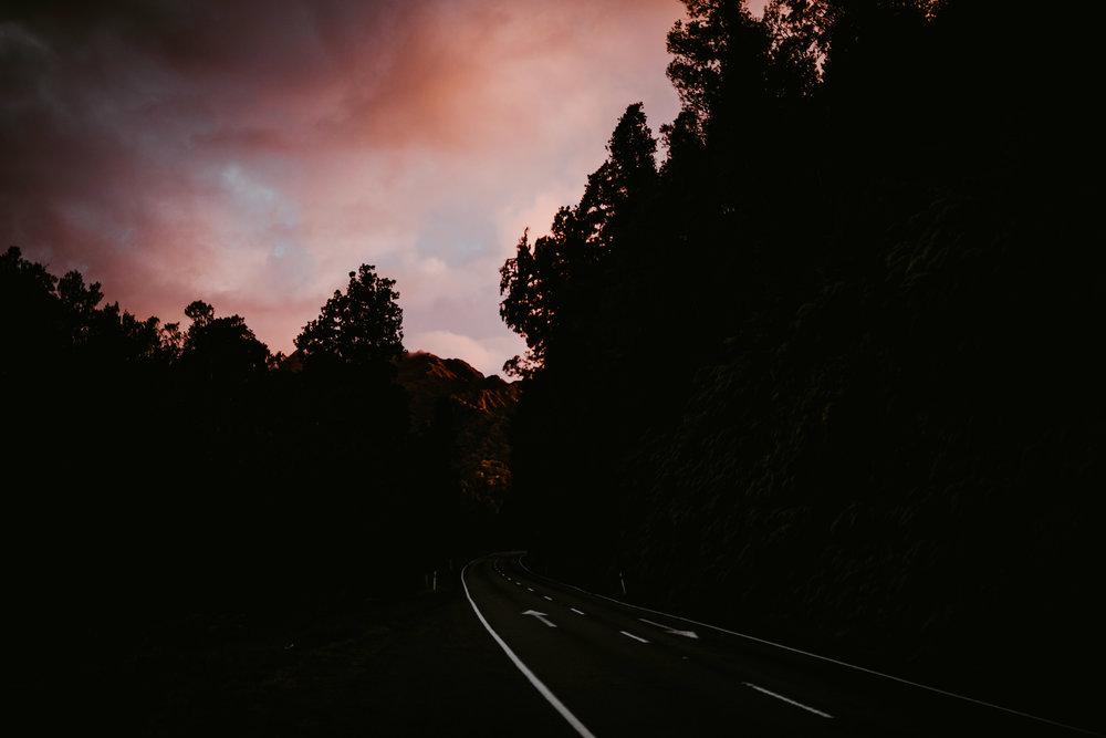 NewZealand-TheHurstsandCo-2017-3 (100 of 158).jpg