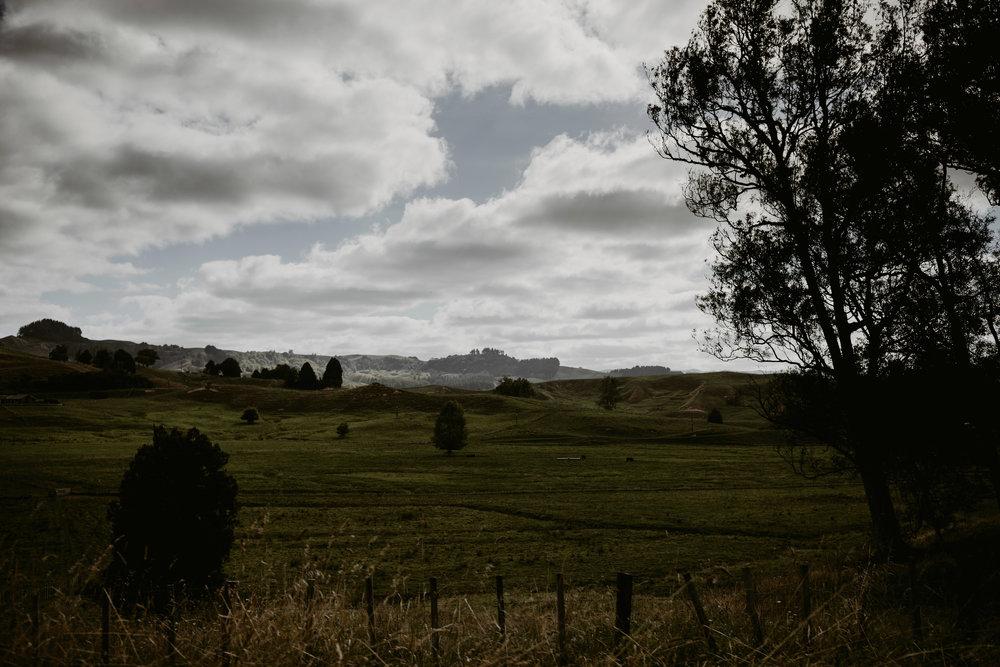 NewZealand-TheHurstsandCo-2017-3 (132 of 158).jpg