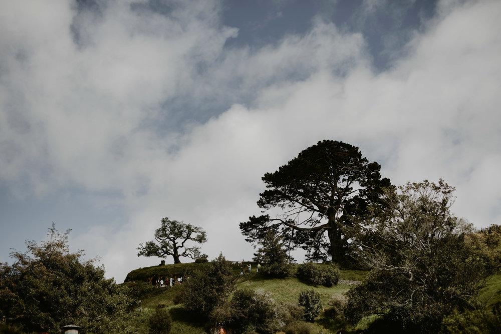 NewZealand-TheHurstsandCo-2017-3 (142 of 158).jpg