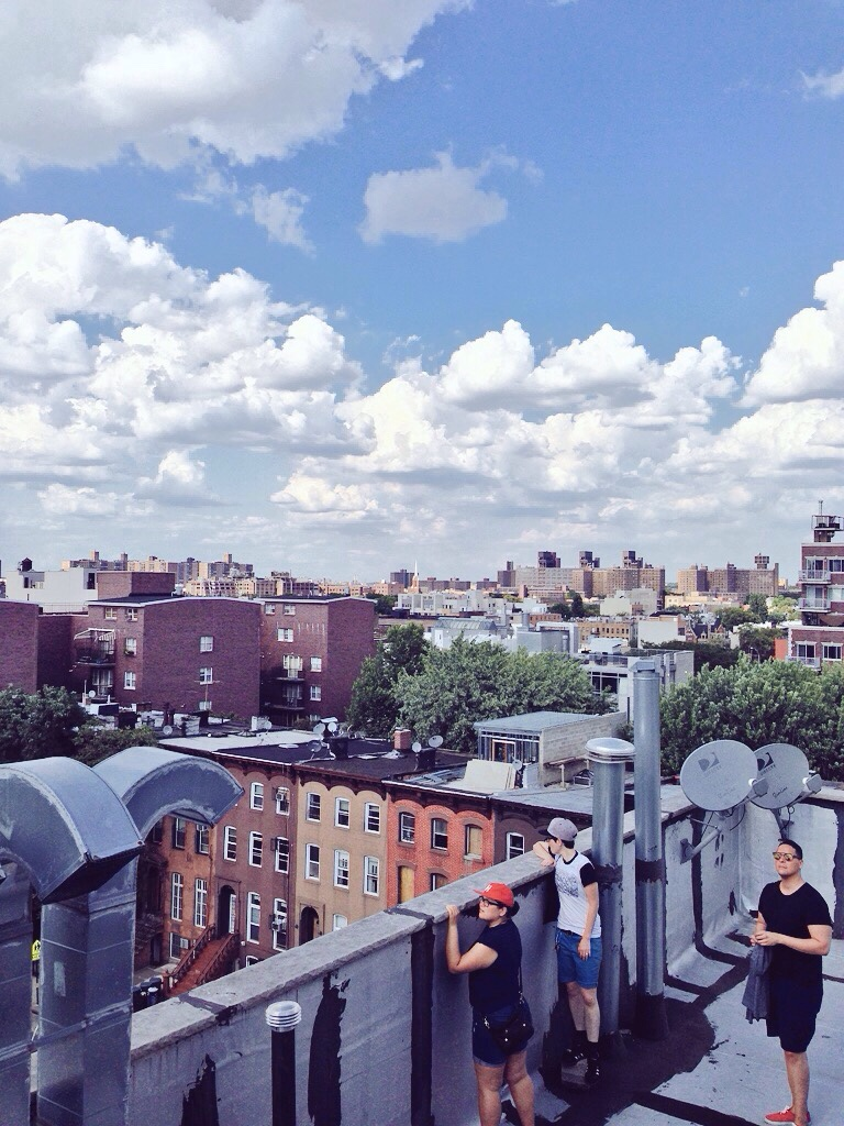 Bedstuy rooftop dreams with the cool kids.