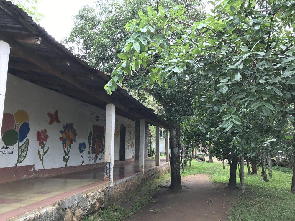 Corridor of museum