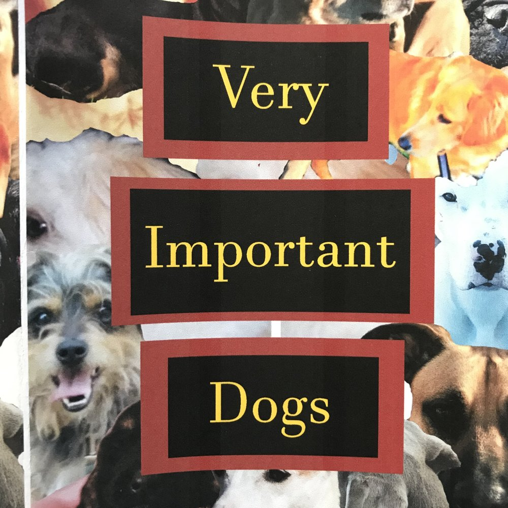 Very Important Dogs Zine