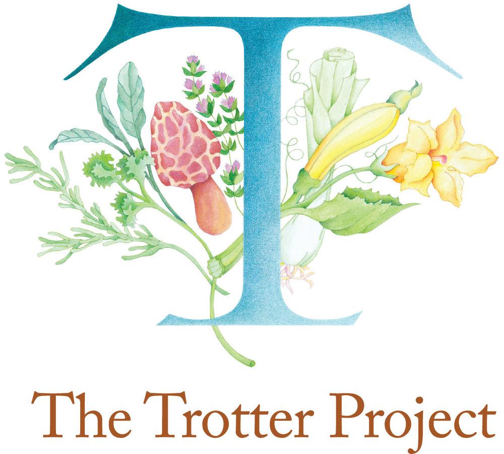 TTP_logo.jpg
