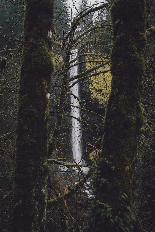 Latourell Falls 9.jpg