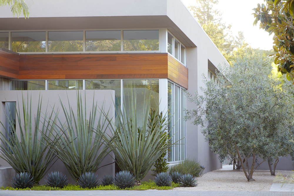 customized site specific garden design services at your home or business starting at 400 - Garden Design Services