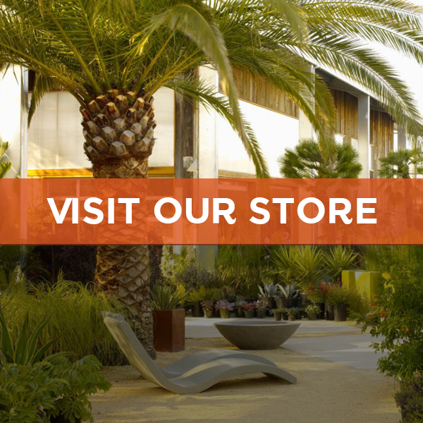 Visit the store! People tell us our store is the most beautiful garden store they've ever visited. Click for a map.