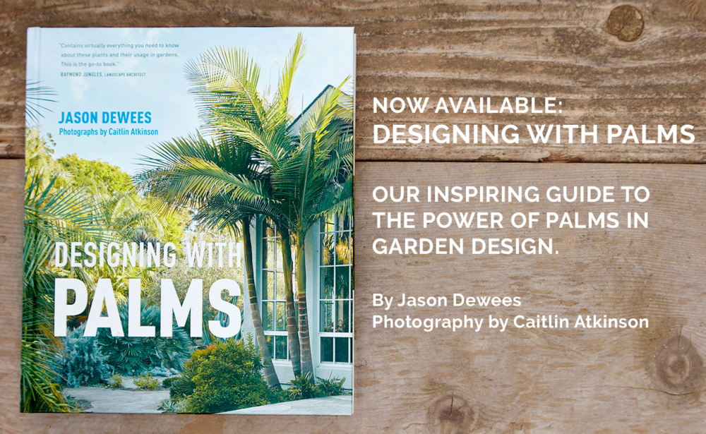 Flora Grubb Gardens Designing with Palms Jason Dewees.png