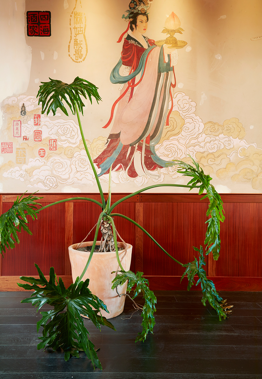 Flora-Grubb-Gardens-Mister-Jius-Entryway-Plants.jpg